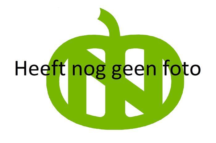 Logo_groen_12_cm_10.JPG